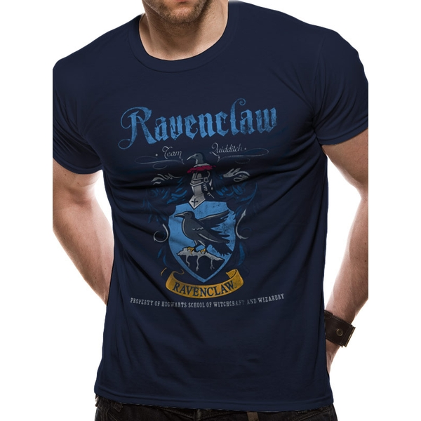 Harry Potter - Ravenclaw Quidditch Men's Large T-Shirt - Blue