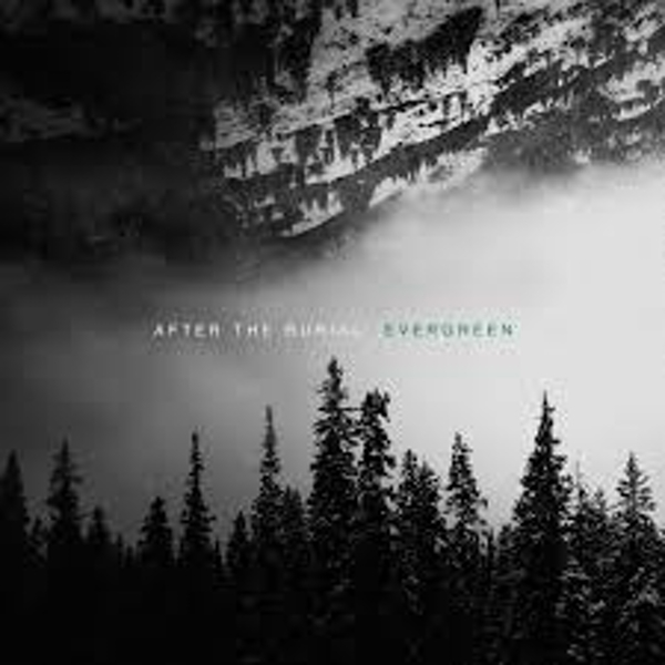 After The Burial – Evergreen Vinyl