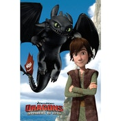 Dragons Toothless Maxi Poster