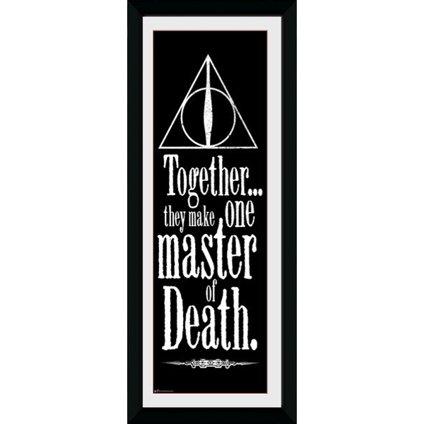 Harry Potter Deathly Hallows Framed Collector Print