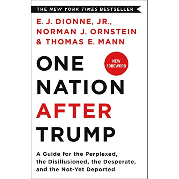 One Nation After Trump A Guide for the Perplexed, the Disillusioned, the Desperate, and the Not-Yet Deported Paperback / softback 2018