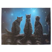 Large Wish Upon A Star Canvas Picture by Lisa Parker
