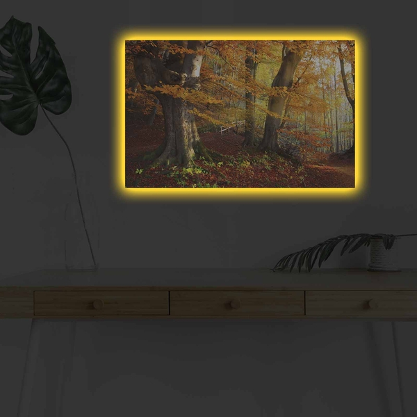 4570DHDACT-151 Multicolor Decorative Led Lighted Canvas Painting