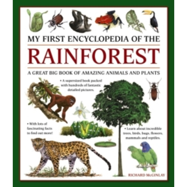 My First Encyclopedia of the Rainforest: A Great Big Book of Amazing Animals and Plants by Anness Publishing (Paperback, 2017)