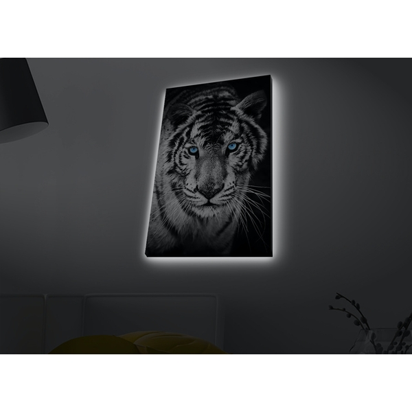 4570MDACT-053 Multicolor Decorative Led Lighted Canvas Painting