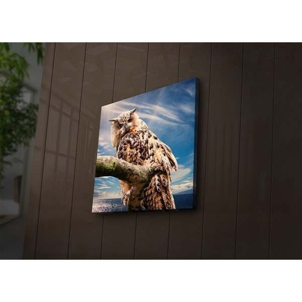 4040?ACT-54 Multicolor Decorative Led Lighted Canvas Painting