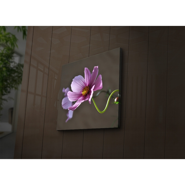 4040?ACT-44 Multicolor Decorative Led Lighted Canvas Painting