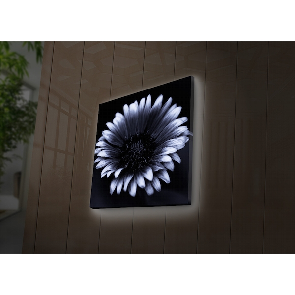 4040DACT-33 Multicolor Decorative Led Lighted Canvas Painting