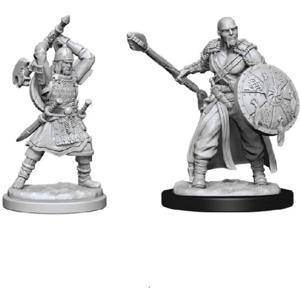 D&D Nolzur's Marvelous Unpainted Miniatures (W13) Human Barbarian Male