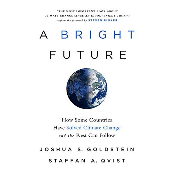 A Bright Future How Some Countries Have Solved Climate Change and the Rest Can Follow Hardback 2019