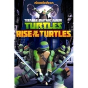 Teenage Mutant Ninja Turtles, Rise Of The Turtles DVD
