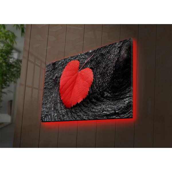 4570DACT-52 Multicolor Decorative Led Lighted Canvas Painting