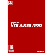 Wolfenstein Young Blood PC Game