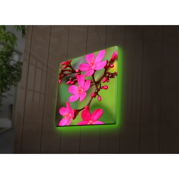 4040DACT-40 Multicolor Decorative Led Lighted Canvas Painting