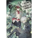 Is It Wrong to Try to Pick Up Girls in a Dungeon?, Vol. 12 (light novel) Paperback