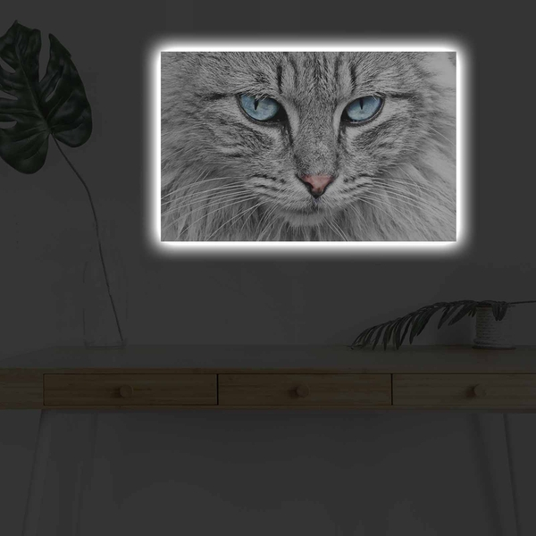 4570DHDACT-065 Multicolor Decorative Led Lighted Canvas Painting