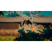 9 Monkeys of Shaolin PS4 Game - Image 7