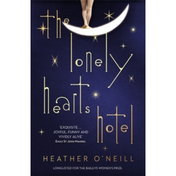The Lonely Hearts Hotel : the Bailey's Prize longlisted novel