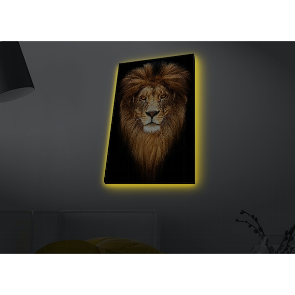 4570MDACT-078 Multicolor Decorative Led Lighted Canvas Painting