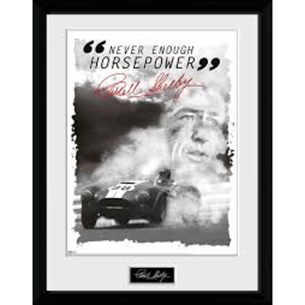 Shelby - Never Enough HP Collector Print
