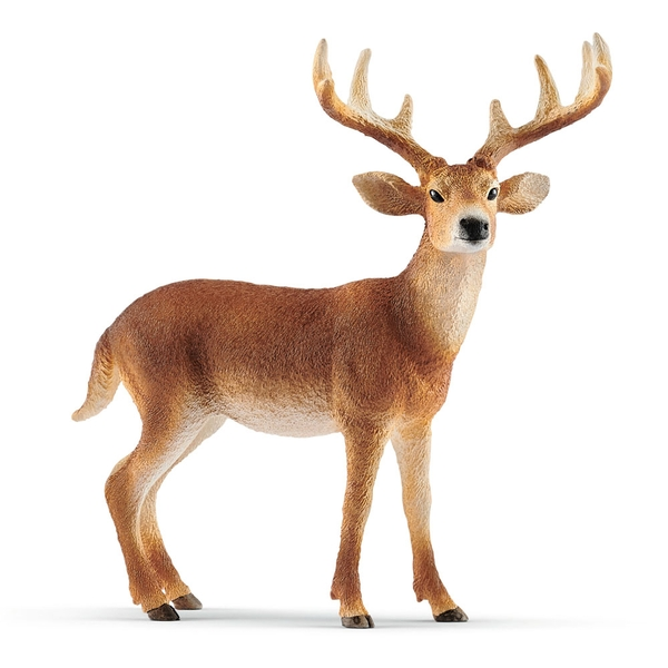 SCHLEICH Wild Life White-Tailed Buck Toy Figure