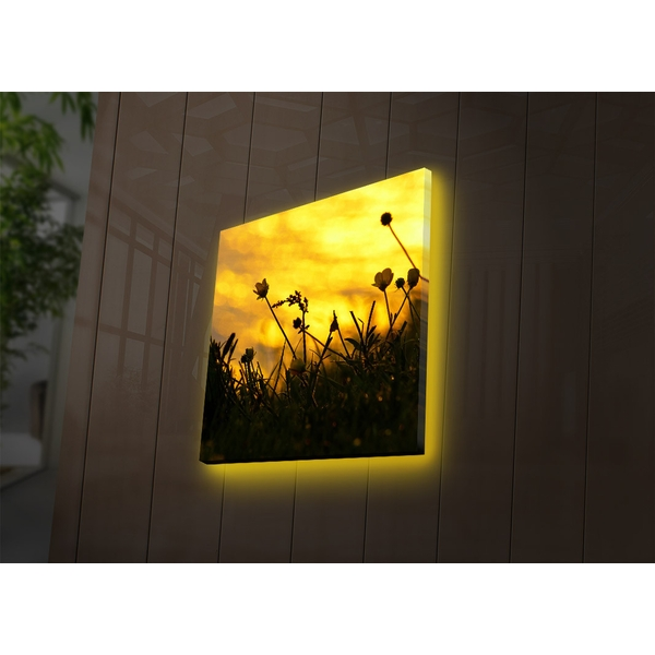 4040DACT-52 Multicolor Decorative Led Lighted Canvas Painting