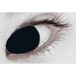 Black Out 1 Day Halloween Coloured Contact Lenses (MesmerEyez XtremeEyez) - Image 2