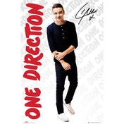 One Direction Liam Logos Maxi Poster