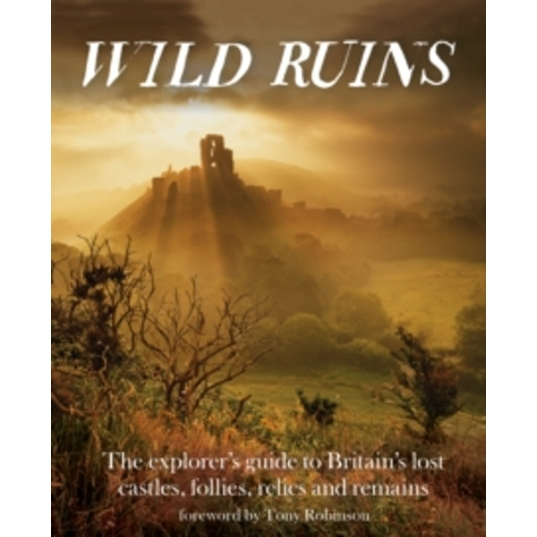 Wild Ruins : The Explorer's Guide to Britain Lost Castles, Follies, Relics and Remains