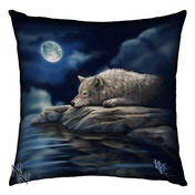 Quiet Reflection Cushion