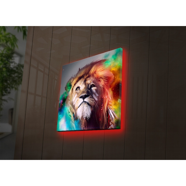 4040DACT-38 Multicolor Decorative Led Lighted Canvas Painting
