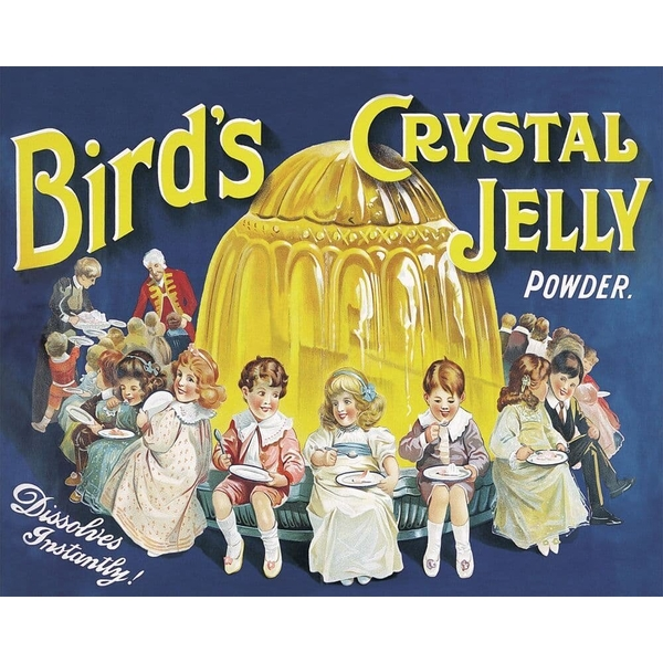 Vintage Metal Sign Retro Advertising Birds Crystal Jelly Powder