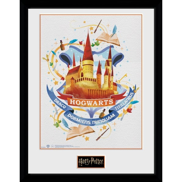 Harry Potter Hogwarts Paint Framed Collector Print