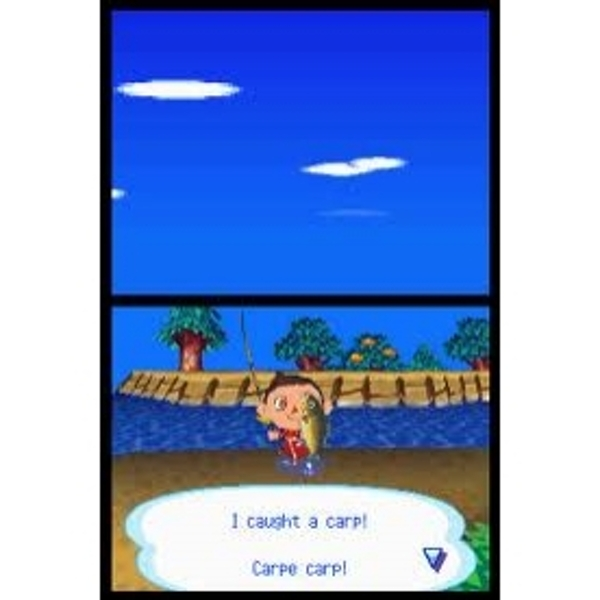 Animal Crossing Wild World Game DS - Image 2