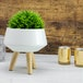 Ceramic Plant Pot | M&W - Image 5