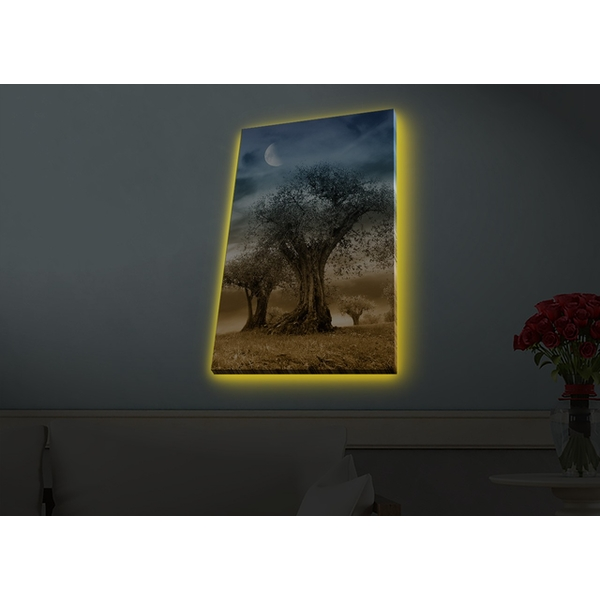 4570HDACT-076 Multicolor Decorative Led Lighted Canvas Painting
