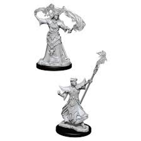 Pathfinder Battles Deep Cuts Unpainted Miniatures (W11) Male Human Sorcerer