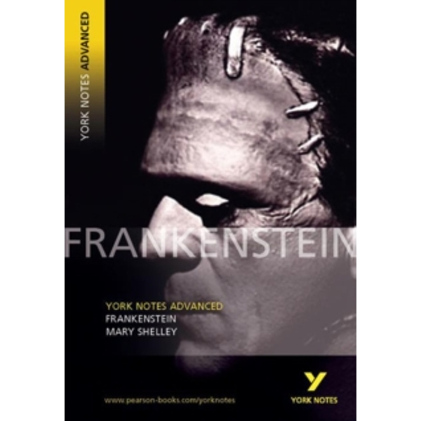 YNA2 Frankenstein by Mary Shelley (Paperback, 2004)