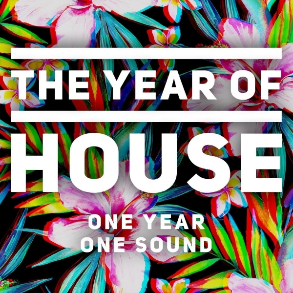 Various Artists - The Year of House CD