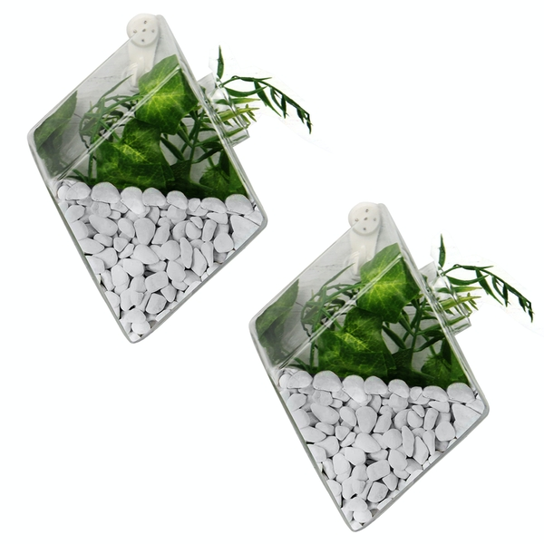 Hanging Diamond Glass Terrarium - Set of 2 | M&W