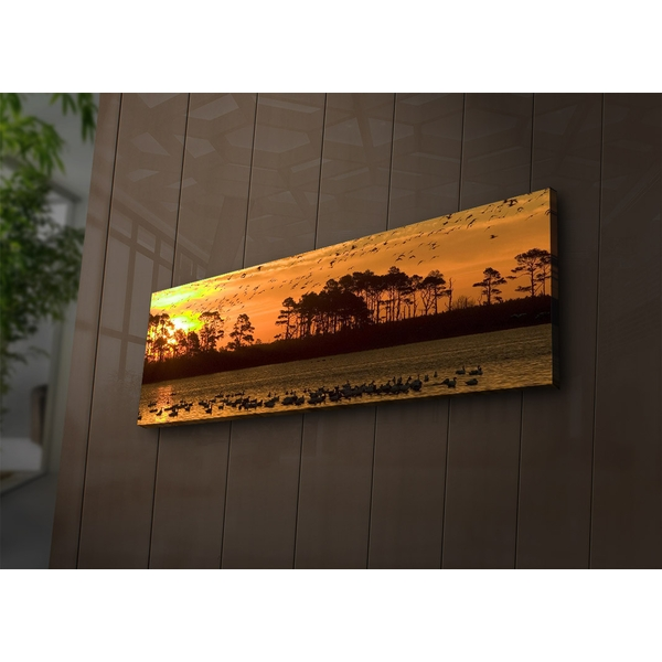 3090?ACT-73 Multicolor Decorative Led Lighted Canvas Painting