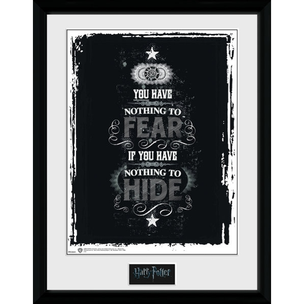 Harry Potter Fear Collector Print