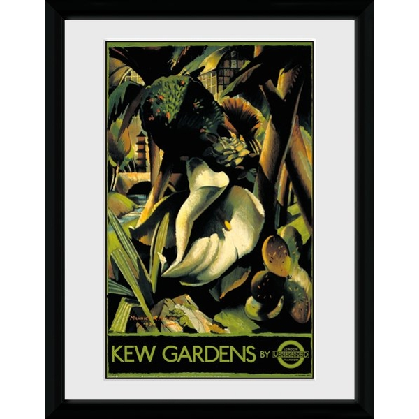 "Transport For London Kew Gardens 2 12"" x 16"" Framed Collector Print"