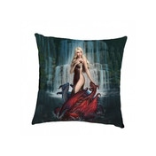 Dragon Bathers Cushion