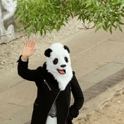 Thumbs Up Panda Mask