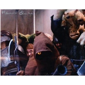 Star Wars In Person Signed 10X8 - Maureen Charlton - Ewok