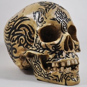 Celtic Tribal Skull 15cm