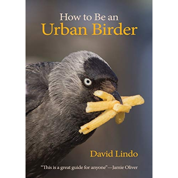 How to Be an Urban Birder  Paperback / softback 2018
