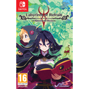 Labyrinth Of Refrain Coven Of Dusk Nintendo Switch Game