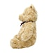 Hundred Acre Wood Cuddly Winnie the Pooh Soft Toy - Image 3